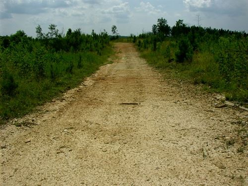 Country Hideaway In Kenbridge, VA : Kenbridge : Lunenburg County : Virginia