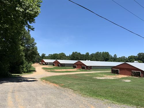 Four Breeder Hen Farm With Land : Talking Rock : Gilmer County : Georgia