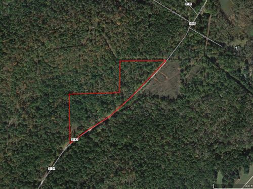 Great Wooded Tract : Jacksonville : Cherokee County : Texas