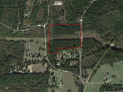 Nice Wooded Tract Close To Lake : Jacksonville : Smith County : Texas