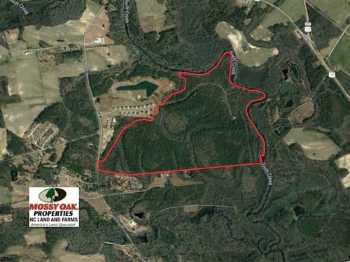 295 Acres of Hunting And Timber LA : Vanceboro : Craven County : North Carolina