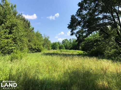Alabama Conservation Ranches for Sale : RANCHFLIP