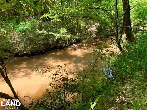 Bogue Chitto Creek And Recreational : Lisman : Choctaw County : Alabama