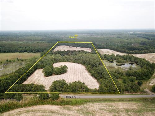 255.5 ac Farm Land, Holmes County : Bonifay : Holmes County : Florida