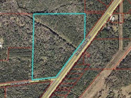 43.73 Acres 778081 : Inglis : Levy County : Florida