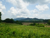 Ocoee River Island : Ocoee : Polk County : Tennessee