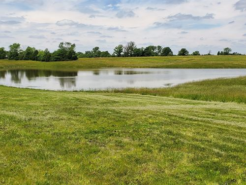 Mo Land For Sale, Hunting, Lake : Bethel : Shelby County : Missouri