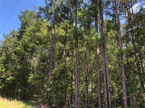 26.17 Acres In Npsd : Summit : Pike County : Mississippi