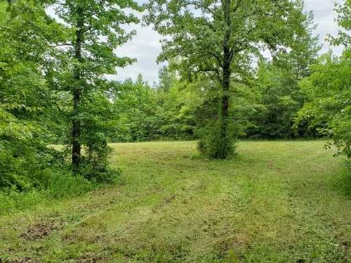 120 Acre Farm Off 4 Lane And Dead : Hornsby : Hardeman County : Tennessee