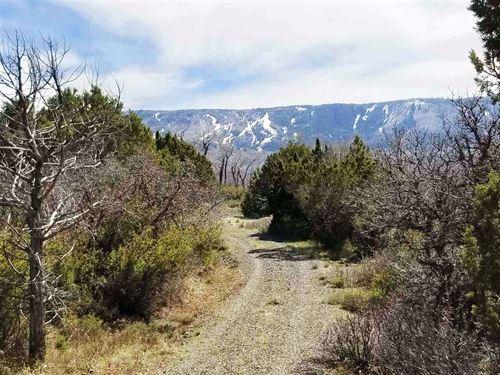 Colorado Mountain Development Land : Mesa : Colorado