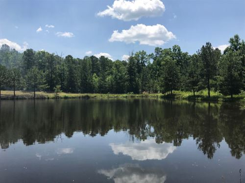 Middle Georgia Recreational Tract : Hillsboro : Jasper County : Georgia