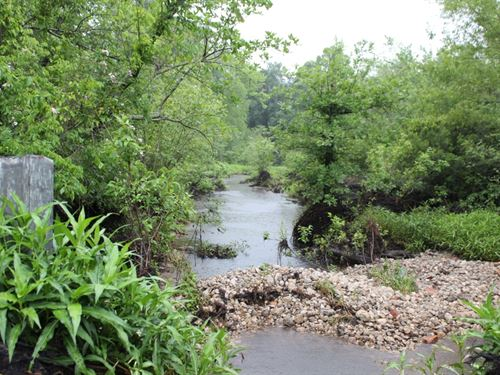 Hunters Wildlife Wooded Paradise : De Kalb : Bowie County : Texas