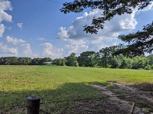 Wishbone Horse Farm : Banks : Pike County : Alabama