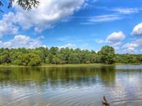 Calhoun Falls Big Lake Tract : Calhoun Falls : Abbeville County : South Carolina