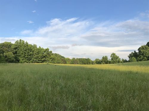 Little Bullskin Rd, 146 Acres : Patriot : Gallia County : Ohio