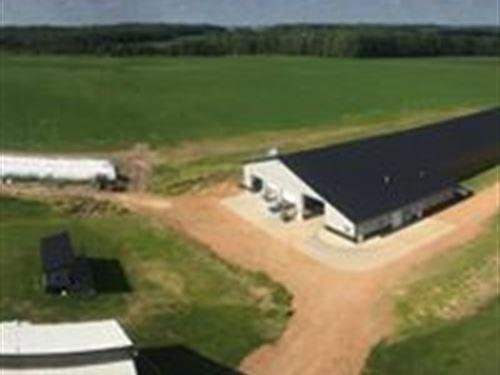 Turn Key 150 Cow Robotic Dairy : Edgar : Marathon County : Wisconsin