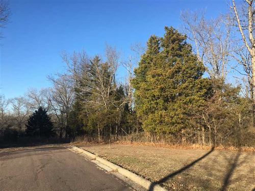 25 Acres of Investment/Develop : Forsyth : Taney County : Missouri