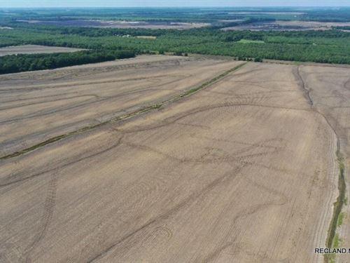 214.3 Ac, Irrigated Farm With Duck : Waverly : Madison Parish : Louisiana