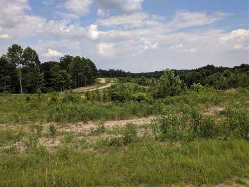 345 Acres in Stewart County, Fant : Dover : Stewart County : Tennessee