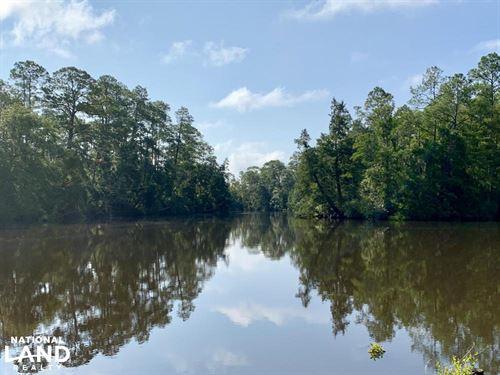 Blackwater River Kings Landing Road : Seminole : Baldwin County : Alabama