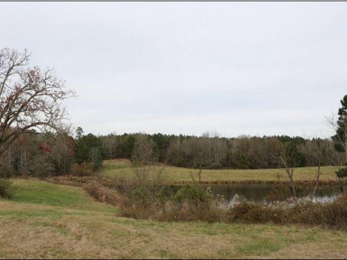 104 Acres In Neshoba County In Unio : Union : Neshoba County : Mississippi