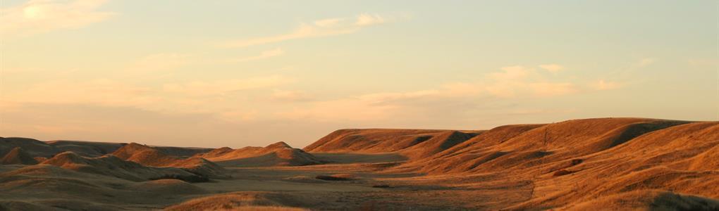 20 Acs $188/Mo 1 Mile To Paved Hwy : Sierra Blanca : Hudspeth County : Texas