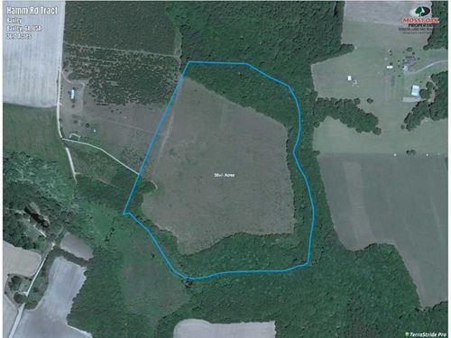 Land For Sale in Appling County, GA : Baxley : Appling County : Georgia