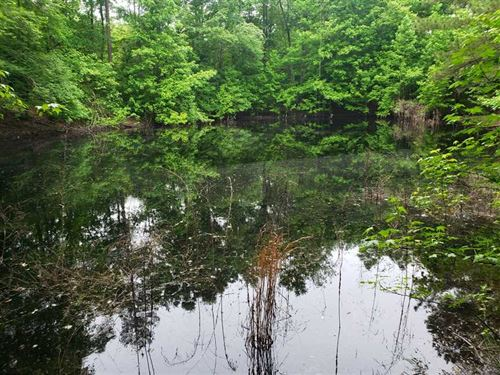Recreation, Ag And Timberland : Ila : Madison County : Georgia