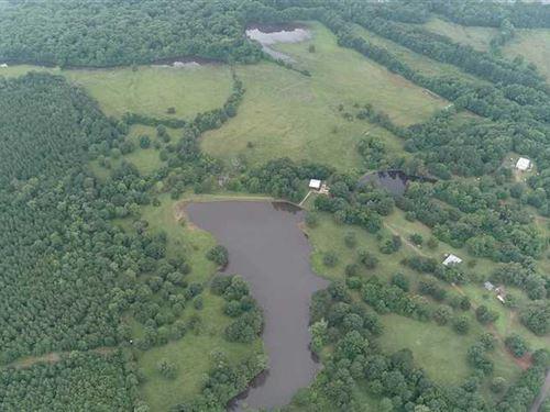 1500 Acre East Texas Hunting Club : San Augustine : Texas