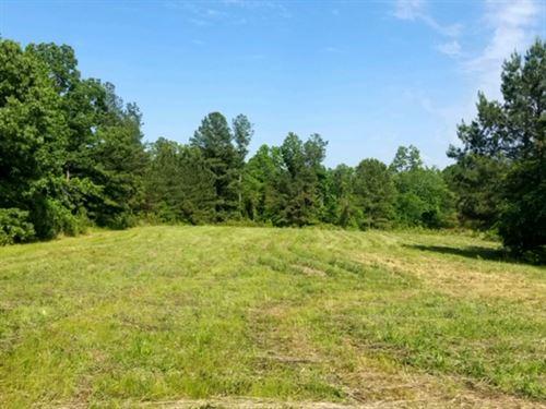 Great Home Site Or Mini-Farm : Trezevant : Carroll County : Tennessee