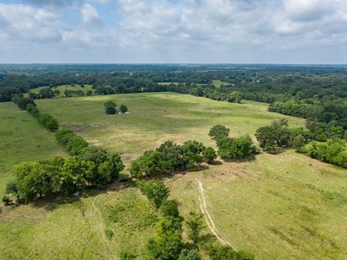 East Texas Pasture Land Hardwoods : Emory : Rains County : Texas