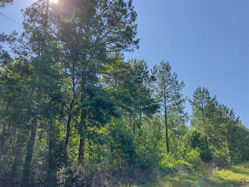 Joskey Estates 281621 : Huntington : Angelina County : Texas