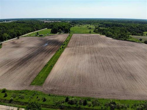 1632 M30 Alger, MI 48610 57 Acres : Alger : Gladwin County : Michigan
