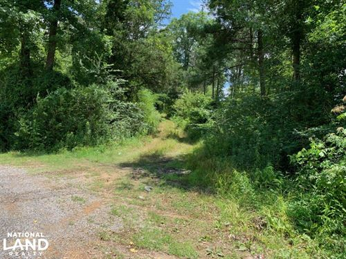 Land Near Forest Mississippi : Forest : Scott County : Mississippi