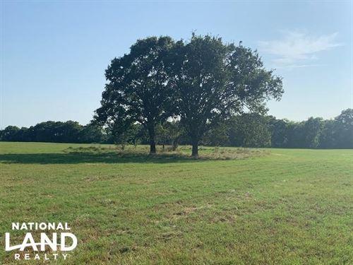 11.2 Acre Hay Meadow & Building : Eustace : Henderson County : Texas