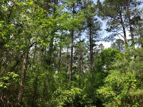 Middle Georgia Estates : Forsyth : Monroe County : Georgia