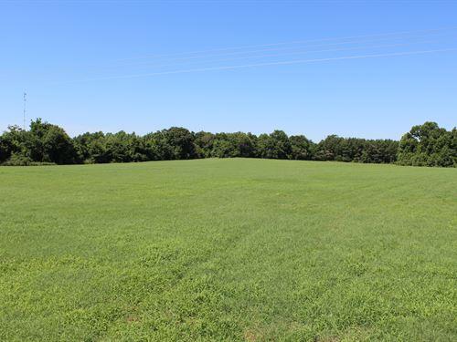 Beautiful Open Pastureland : Tuskegee : Macon County : Alabama