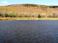 Johnson Pond Forest : Kirby : Caledonia County : Vermont