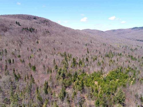 Eden Square Sugarbush : Eden : Lamoille County : Vermont