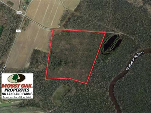 Under Contract, 37 Acres of Prime : Columbia : Tyrrell County : North Carolina