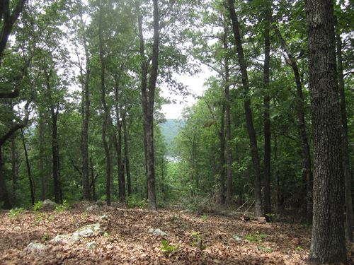 Wooded Land View Lake Bull Shoals : Flippin : Marion County : Arkansas