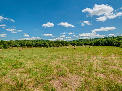 110 Ac Near Franklin : Franklin : Williamson County : Tennessee