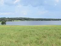 Owner Finance 27 Ac Lakefront/Pond : Brooksville : Hernando County : Florida