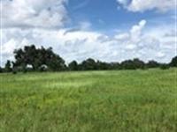 Owner Financing 10 Ac Lake Access : Brooksville : Hernando County : Florida