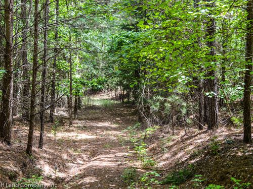 43 Ac, Wooded Tract In Union County : Union : South Carolina