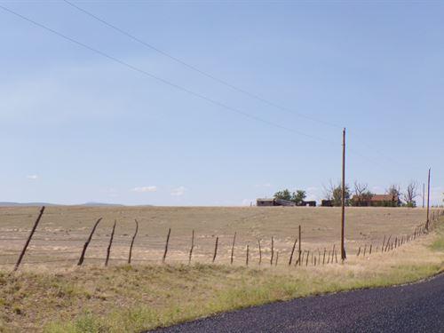 NM Estancia Valley Grazing Land : Estancia : Torrance County : New Mexico
