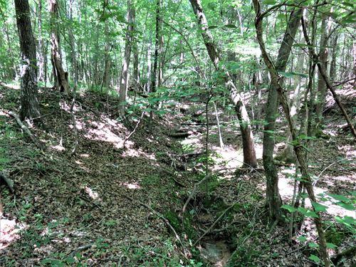 Promised Land Tract : Bradley : Greenwood County : South Carolina