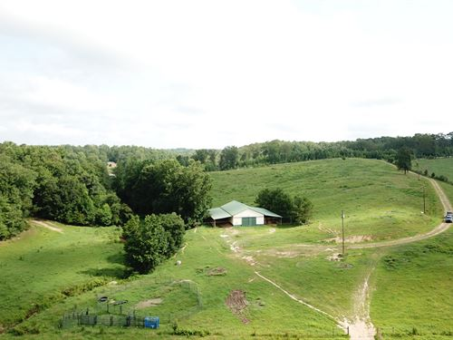Lassetter Creek Farm : Buchanan : Haralson County : Georgia