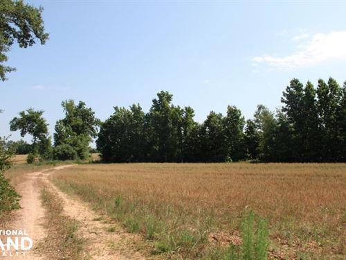 Old Savannah Road Plantation : Millen : Jenkins County : Georgia