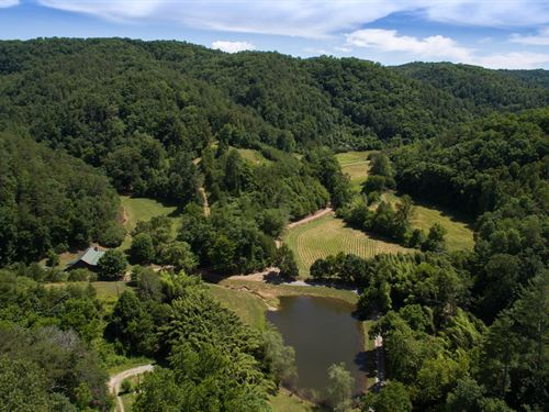 263 Acre Smoky Mountain Retreat : Vonore : Monroe County : Tennessee